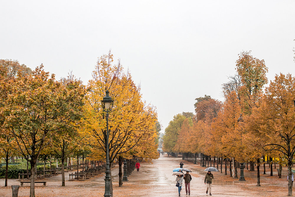 a guide to paris in the fall by everyday parisia