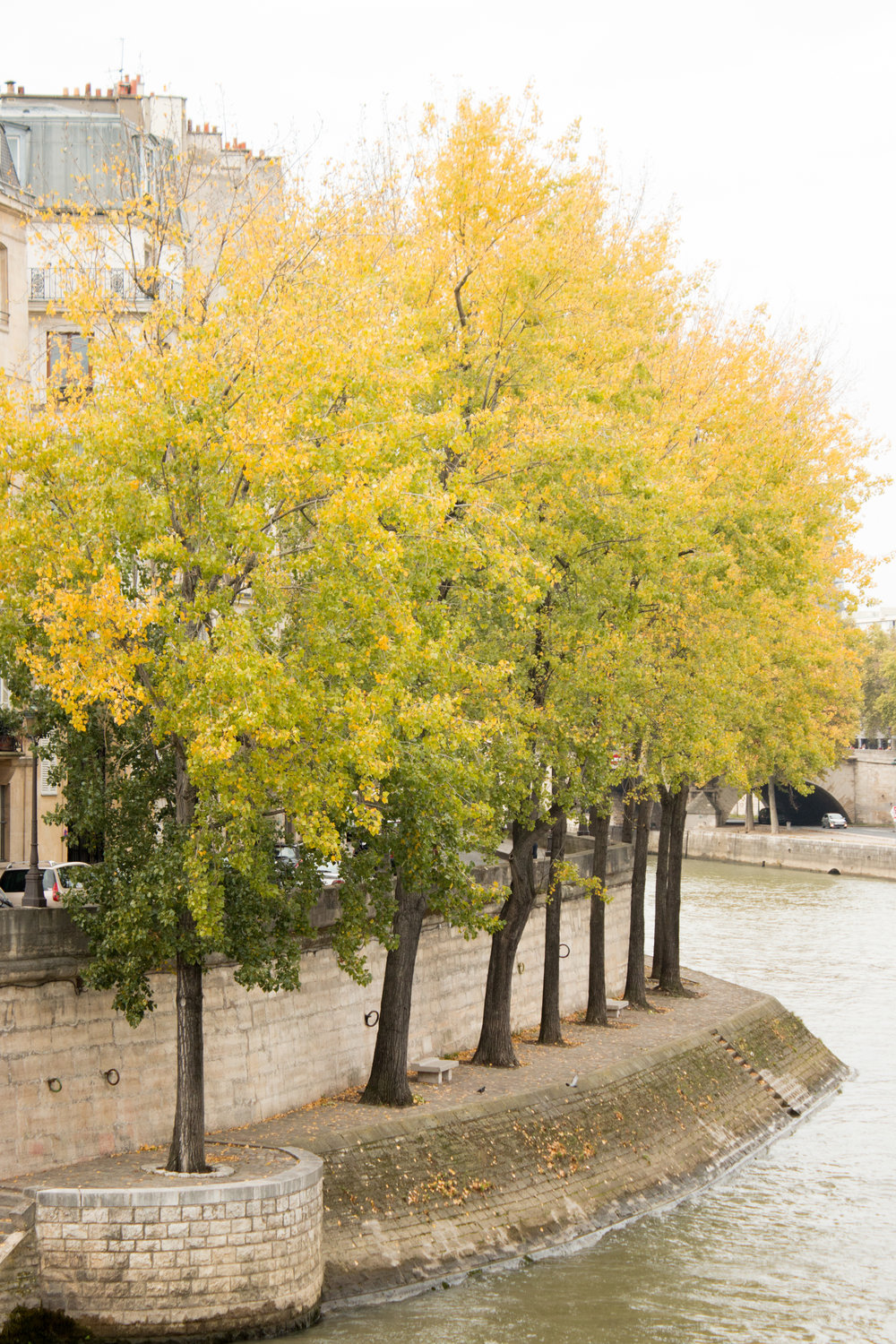 a guide to paris in the fall by everyday parisian