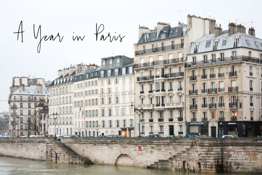 a year in paris by rebecca plotnick