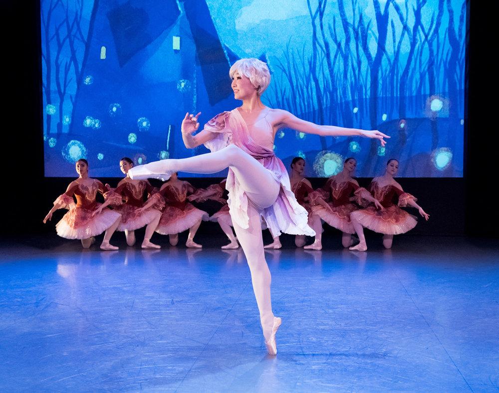 joffrey_ballet_donquixote_background2.jpg