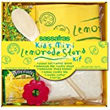 Sassafras Lemonade Stand Kit