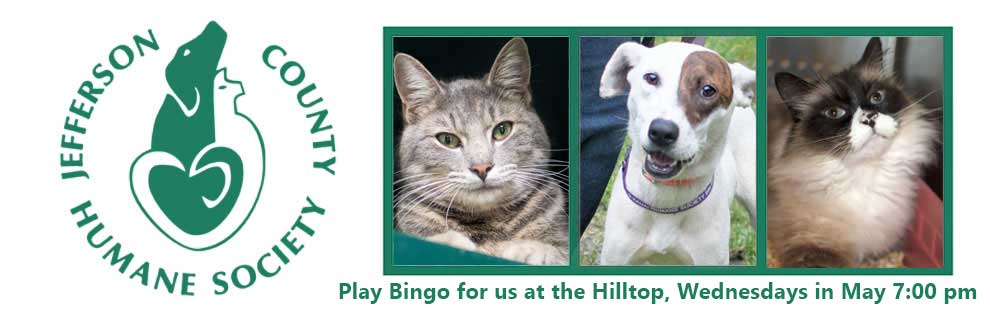 HSJCWA - The Humane Society of Jefferson County WA