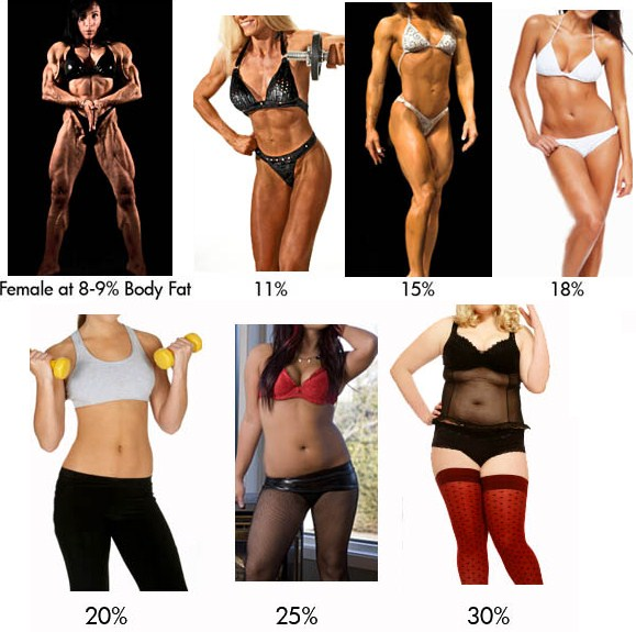 This gives you an idea of how women look like with different percents of bodyfat. Women have drastically different body shapes so someone with 25% BF might look different from a another woman who is also at 25% BF.