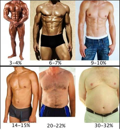 An example of how men's bodies look like at different bodyfat percentages.