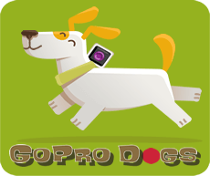 goprodogs.png