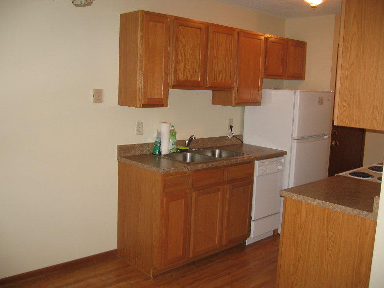 New Kitchen 4.JPG