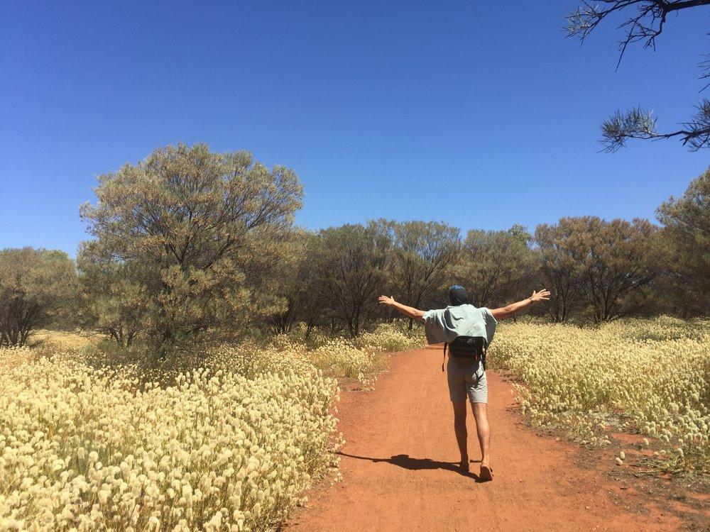 Uluru Base Walk, Liru Walk.