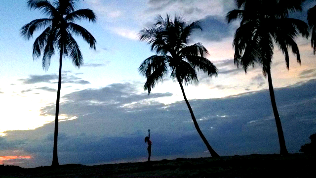 Beach Yoga Islamorada, Florida Keys, Nature, Beauty, Palm Trees, Yogini