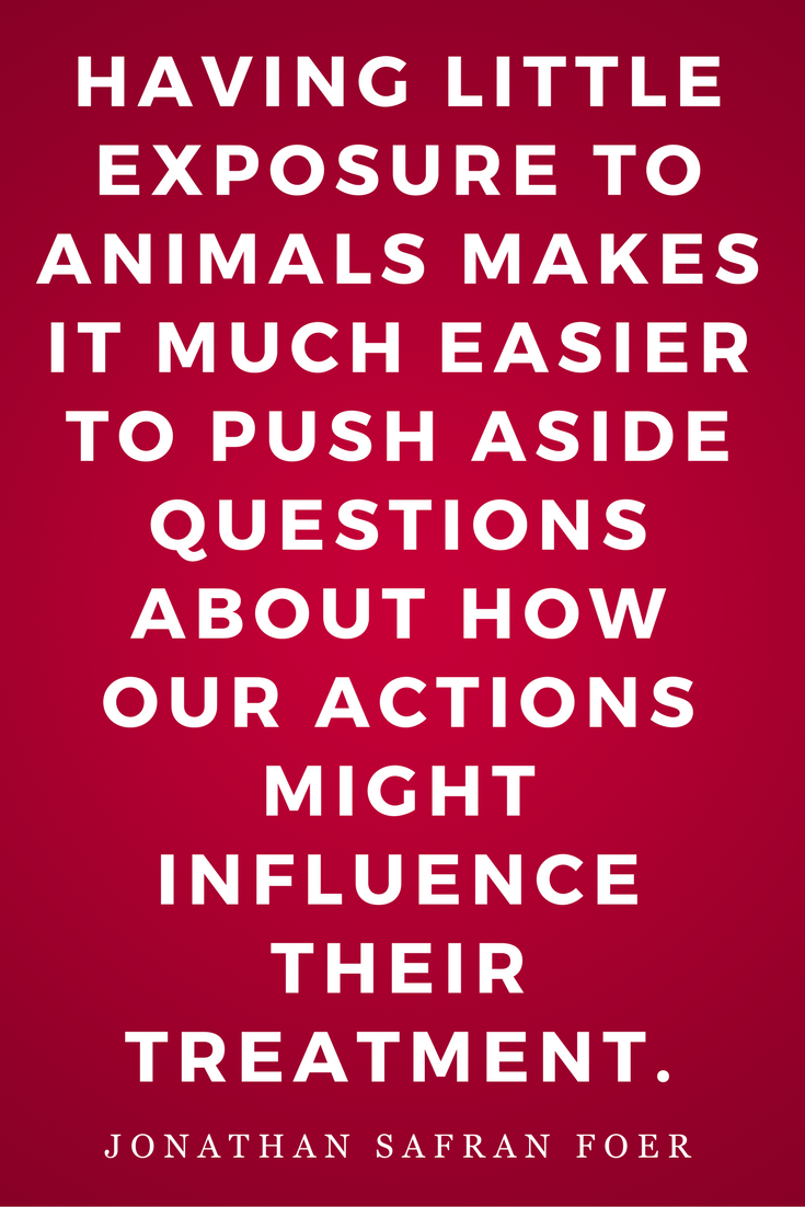 Eating Animals by Jonathan Safran Foer, Diet, Quotes, Books, Inspiration, Treatment