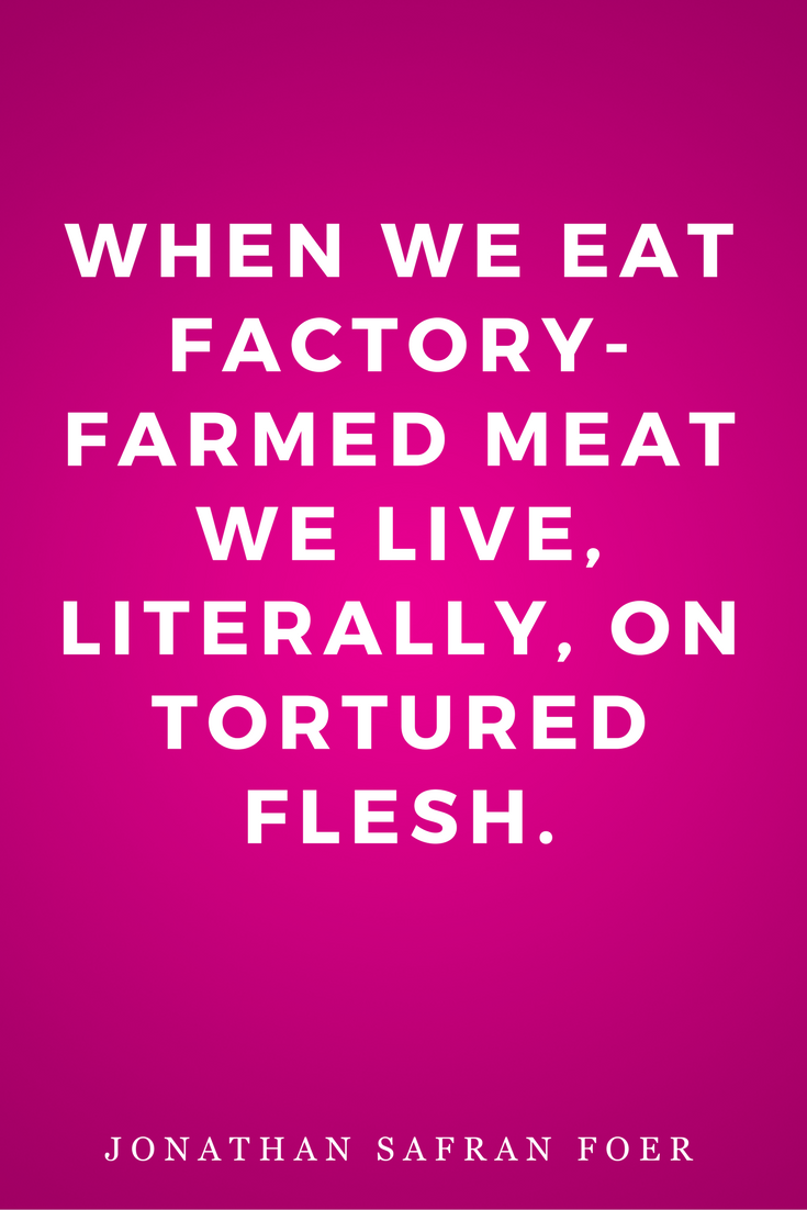 Eating Animals by Jonathan Safran Foer, Diet, Quotes, Books, Inspiration, Horror, Torture