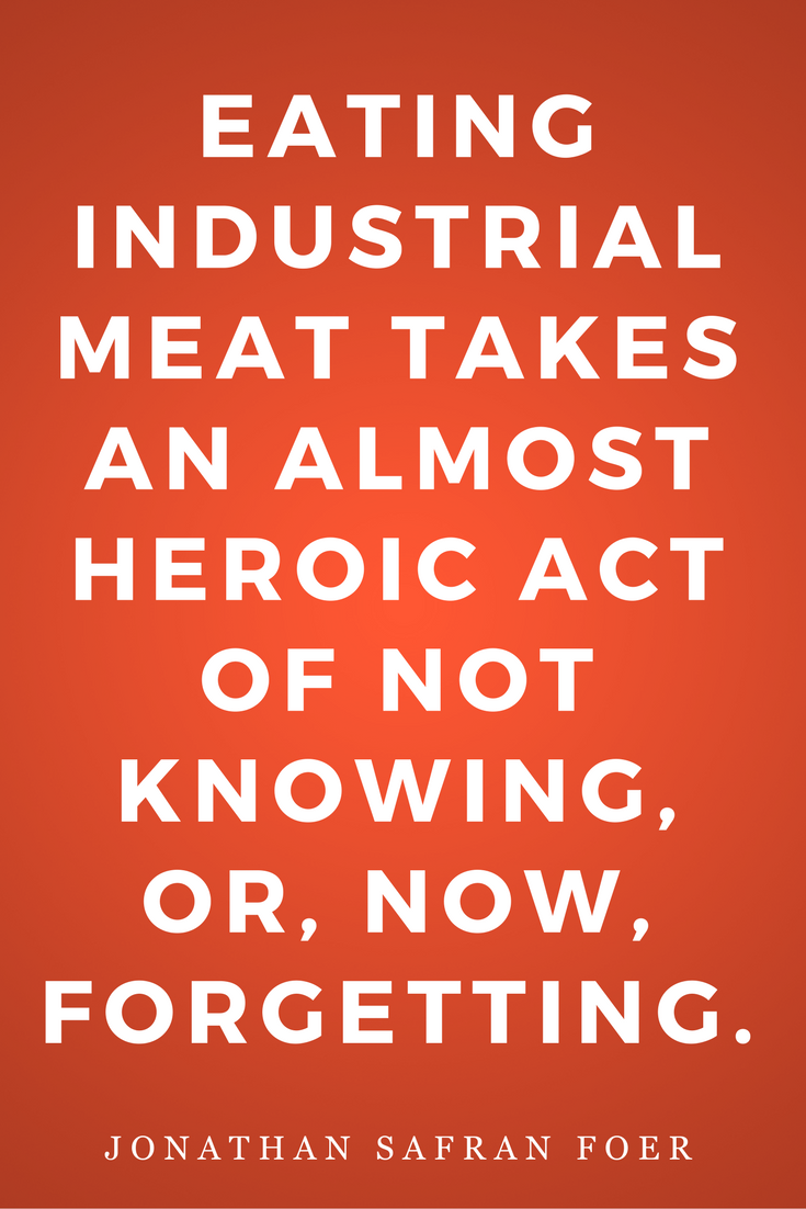 Eating Animals by Jonathan Safran Foer, Diet, Quotes, Books, Inspiration, Heroic