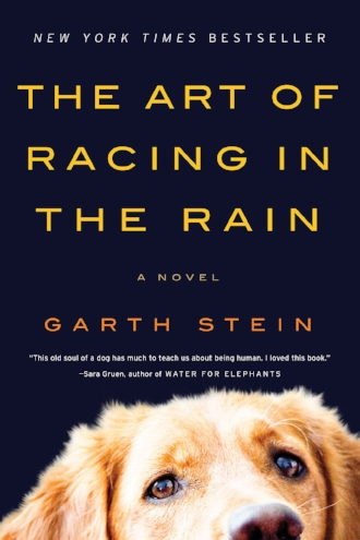 The Art of Racing in the Rain a Novel by Garth Stein New York Times Bestseller Book Blog.jpg