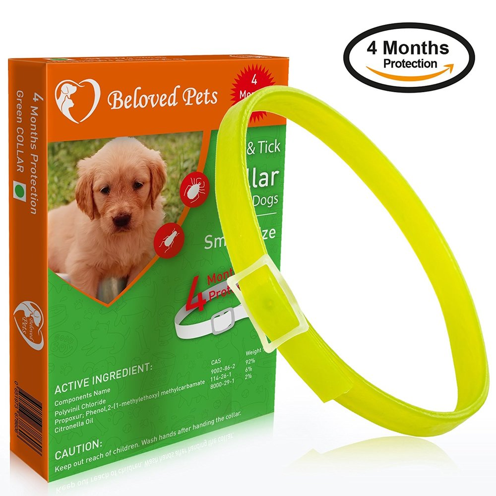 Beloved Pets Flea&Tick Collar (100% Safe and effective) - Flea Control Collar for Dogs and Puppies. Quick and long lasting protection. (Small, Green).jpg