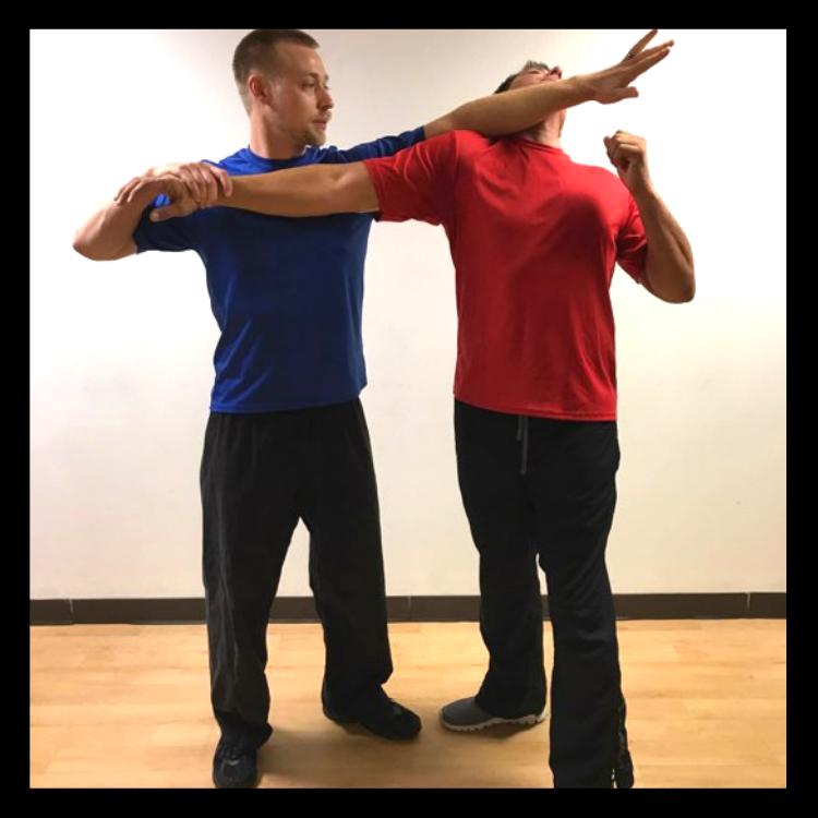 Musings • Peace to the People • Blog • Wellness • Interviews • Mindfulness • Self-Development • Dan Rotnem • Martial Arts