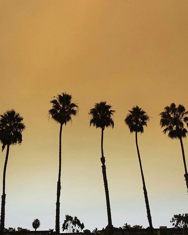 ⚠️Smoke Advisory⚠️ Due to the #CanyonFire2 in Anaheim Hills, #LongBeach is experiencing poor air quality conditions. @longbeachfire Department advise to exercise caution & avoid unnecessary outdoor activities. #repost @cityoflongbeachca [...] . . . #LAliving #californiastreets #gobeach #golongbeach  #affordablehousing #lahousing #forrent #budgetfriendly #budget #property #longbeachliving #california #ilovelongbeach #lbc #southerncalifornia #socal #socalliving #beachwithbenefits #lbchousing #longbeachapts #longbeachhousing #ilovelongbeach #apartments #lowrent #housingdeals