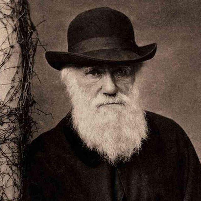 Happy Birthday Darwin bae, thanks for everything.