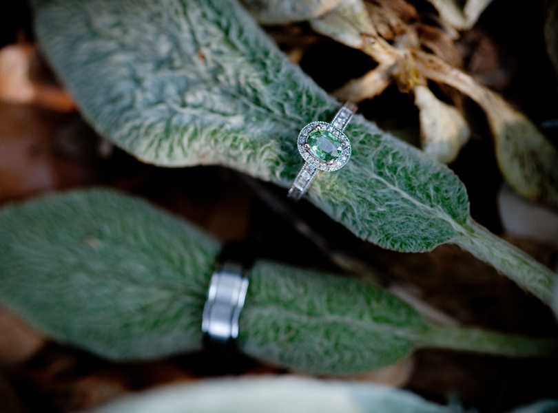 ring picture, nature, skype elopement