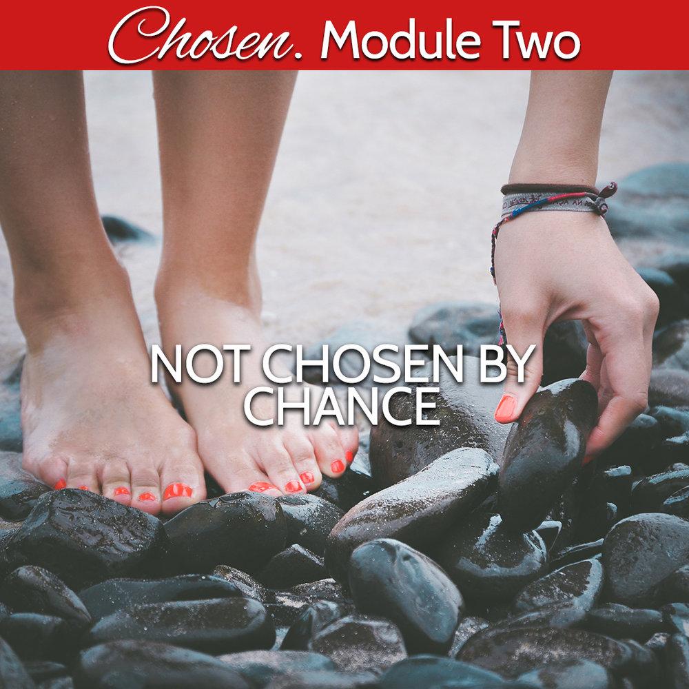 Module Two Not chosen by chance.jpg