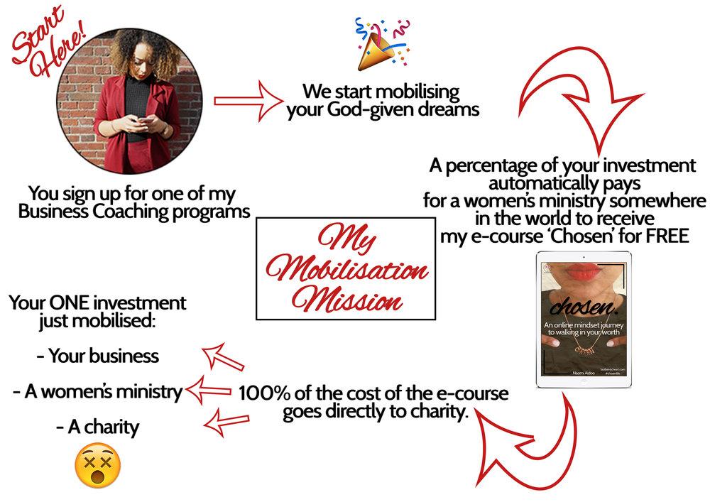 mobilisation mission.png