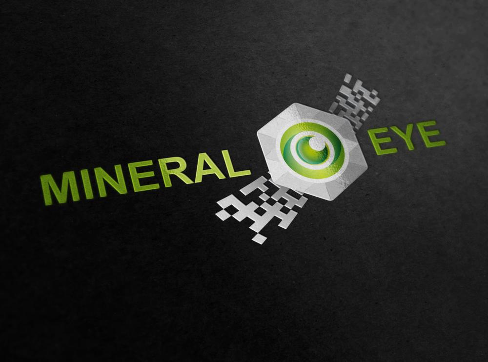 NiberalEye_logo.jpg
