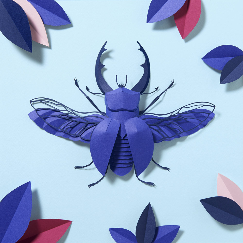 WRK_beetle_Colorplan_Andrea_Weber_Damoun_Tamir.jpg