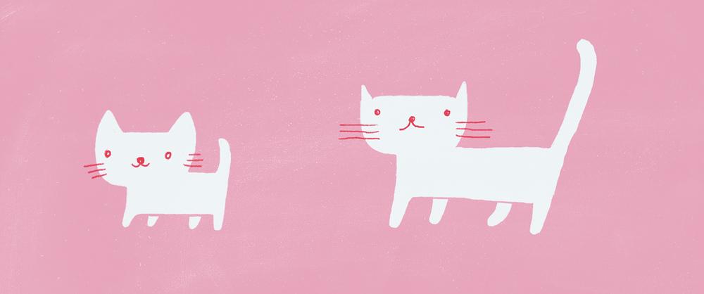 header_Cat_01.jpg