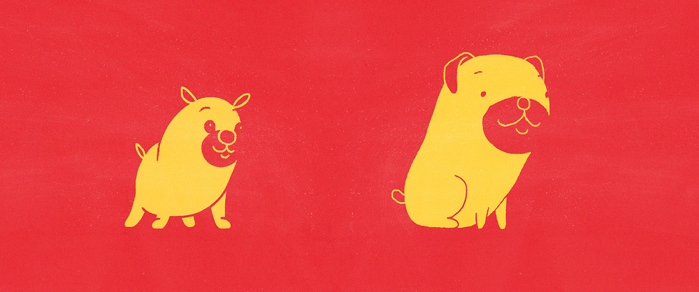 header_dog_01.jpg
