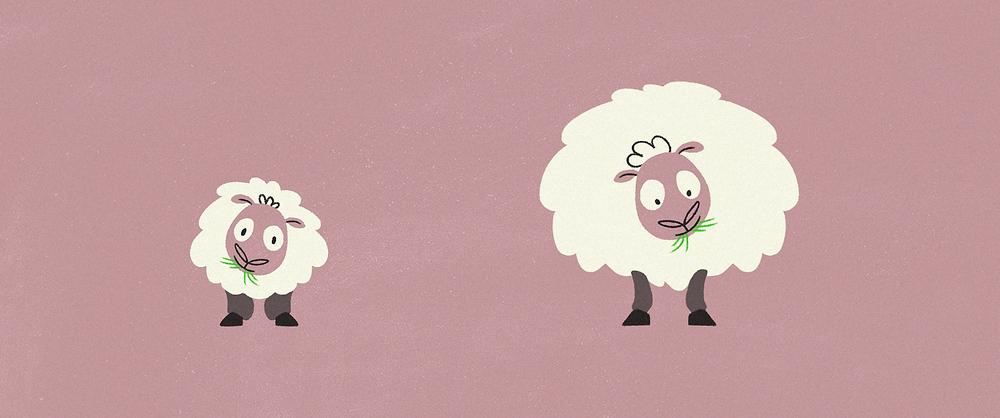 header_sheep_01.jpg