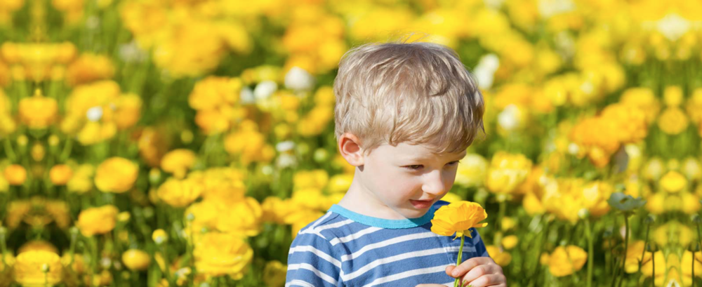 Scientists even believe it is possible for a child to form emotional connections to smells whilst they are still in the womb. In fact most of our scent memories are formed as children which is why smells are often associated with our childhood. For me, the smell of cut grass always makes me think about playing in the garden over the school holidays. I'd love to know what smell reminds you of childhood ? Tweet me!