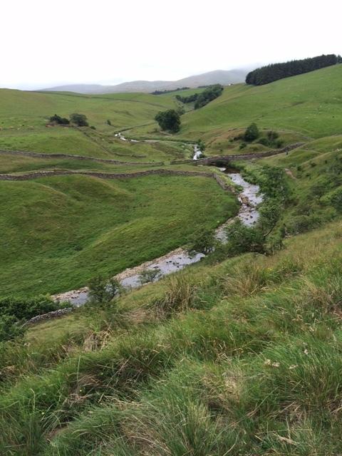 Field walking en route to Kirkby Stephen
