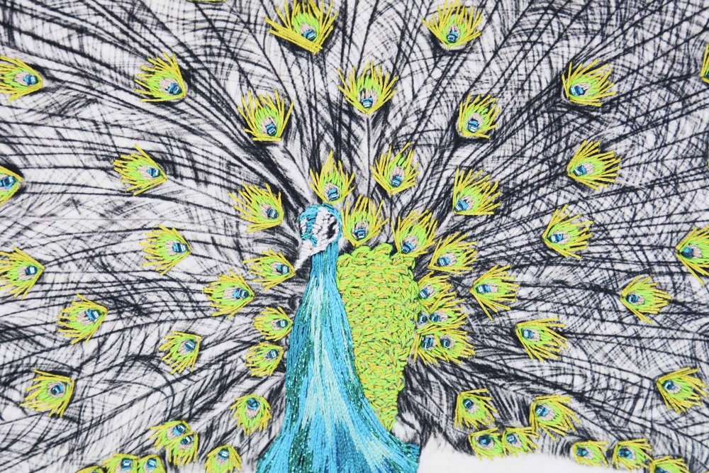 green-kew-peacocks-12.jpg