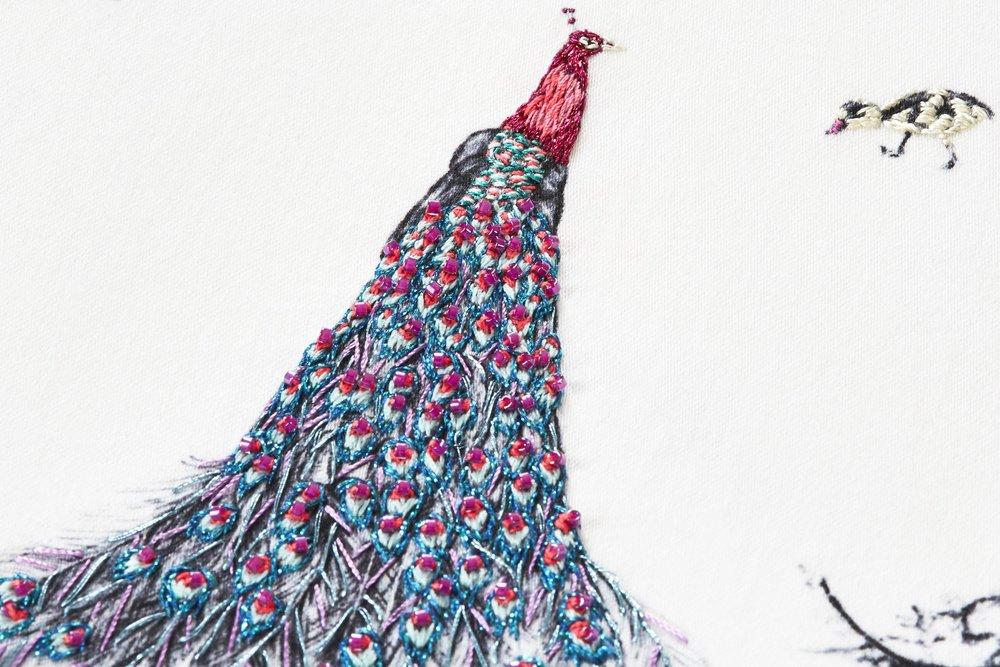 pink-kew-peacocks-7.jpg
