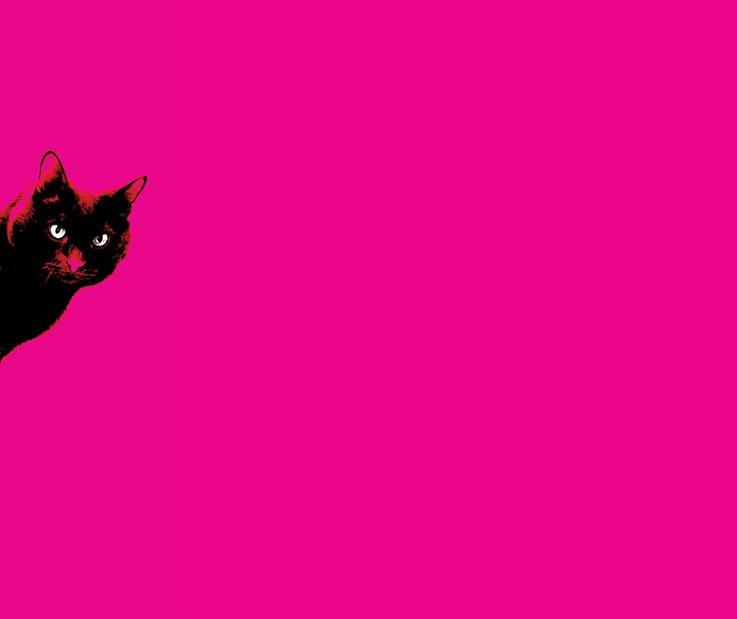 TOILETTOUR - Wil je meer weten over het concept en de kunstenaar achter elke wc, ga dan met de toiletjuffrouw mee!Zaterdagmiddag geeft toiletjuffrouw Charlotte de Goey een rondleiding langs elke Kattuhbak.Verzamelpunt op de Grote Markt, voor September.Volg de wc borstel!