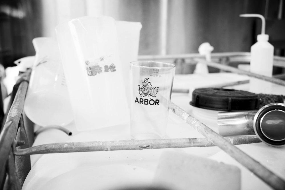 Arbor06.jpg