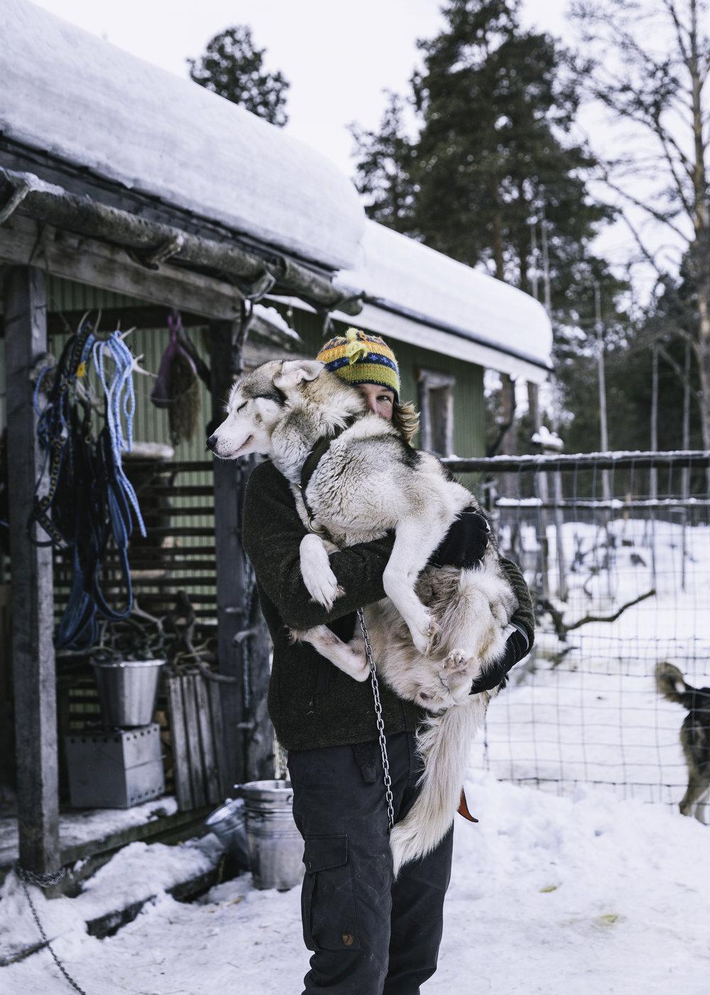Arctic Life 60.jpg