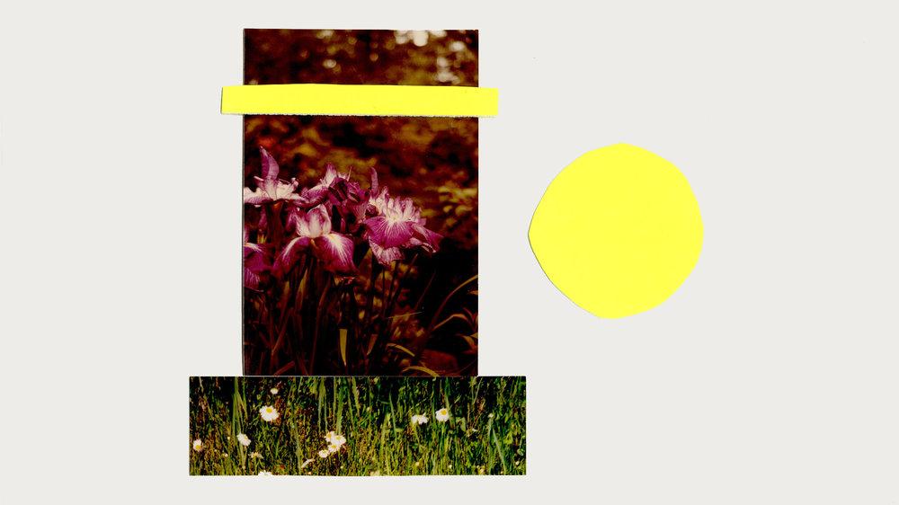 neoncollage2.jpg