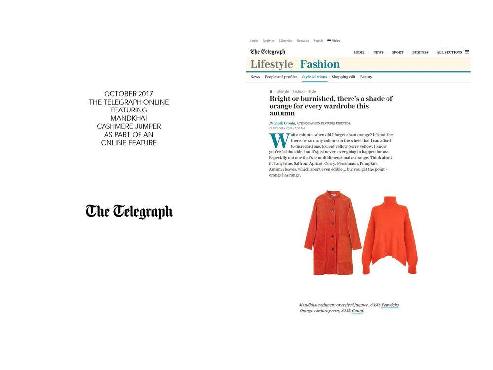 Telegraph Online big - 23.10.17.jpg
