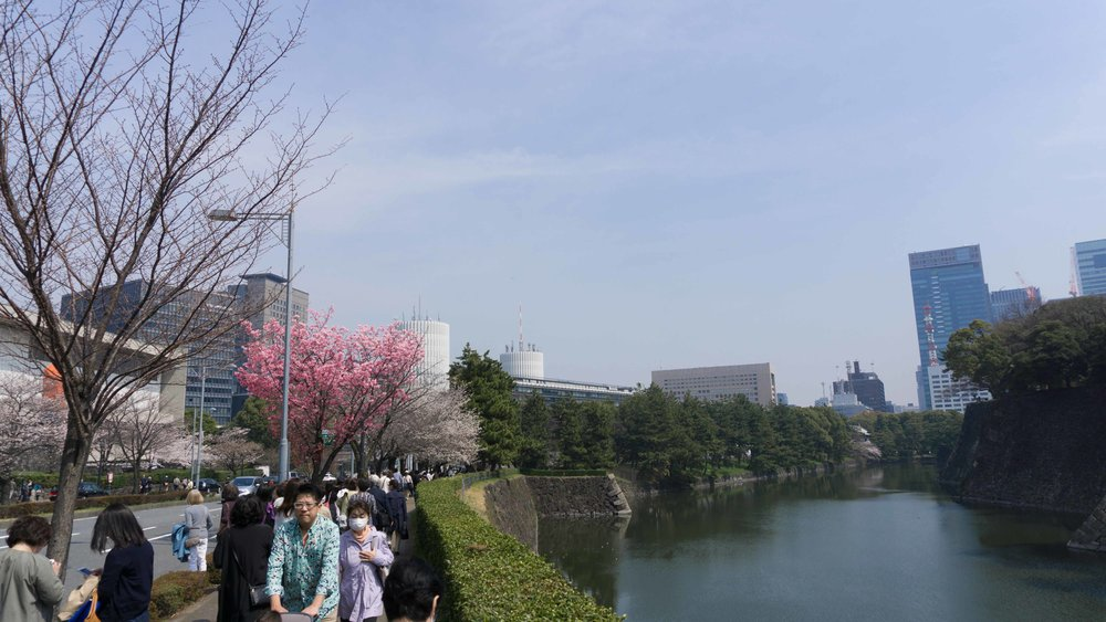 Tokyo view from Imperial Palace