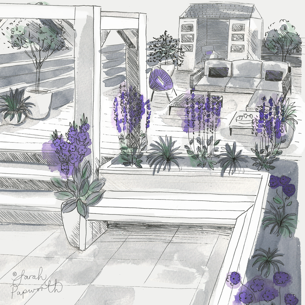 Landscaped-garden-illustration-by-sarah-papworth.png