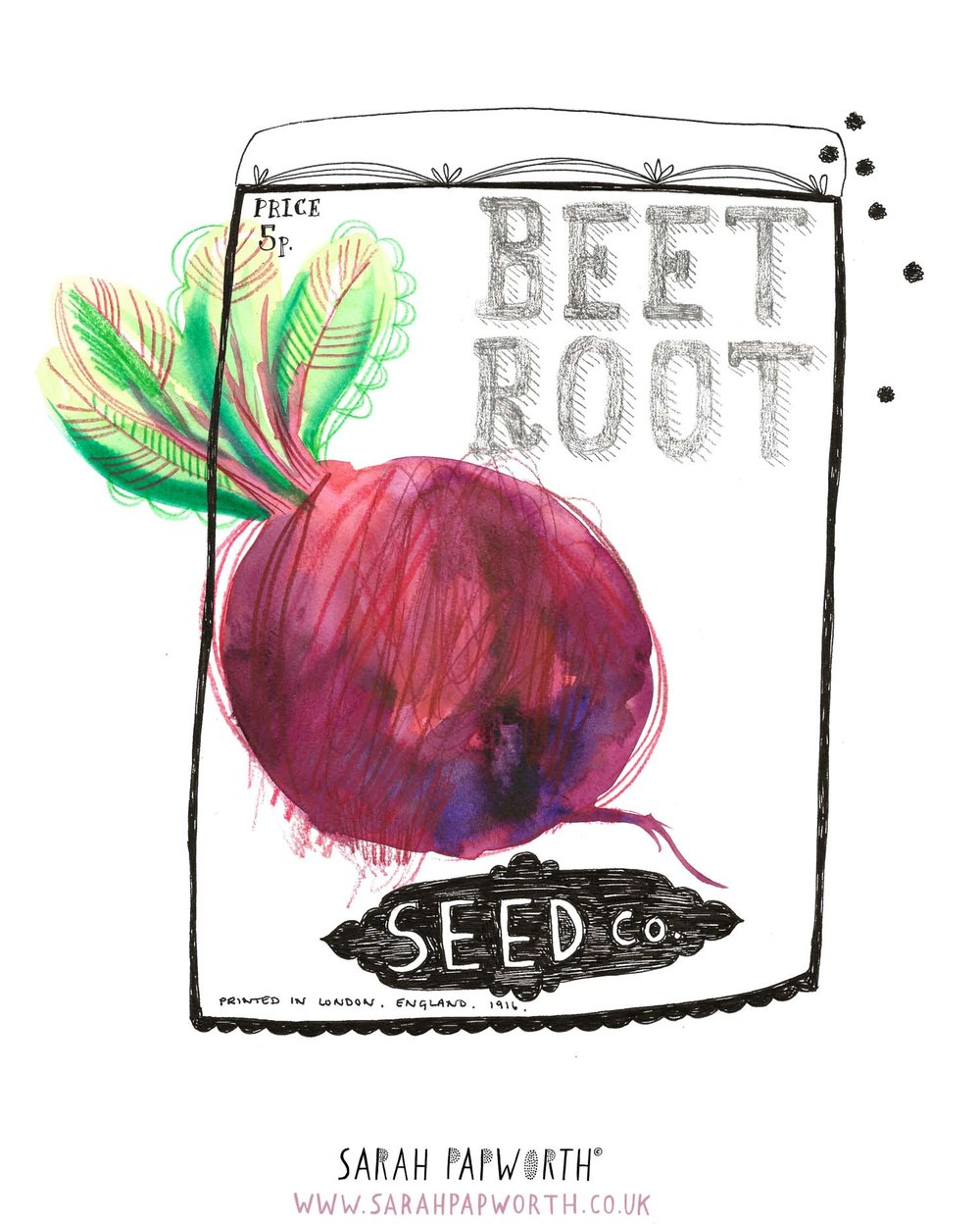 beetroot illustration food watercolour editorial by sarah papworth.jpg