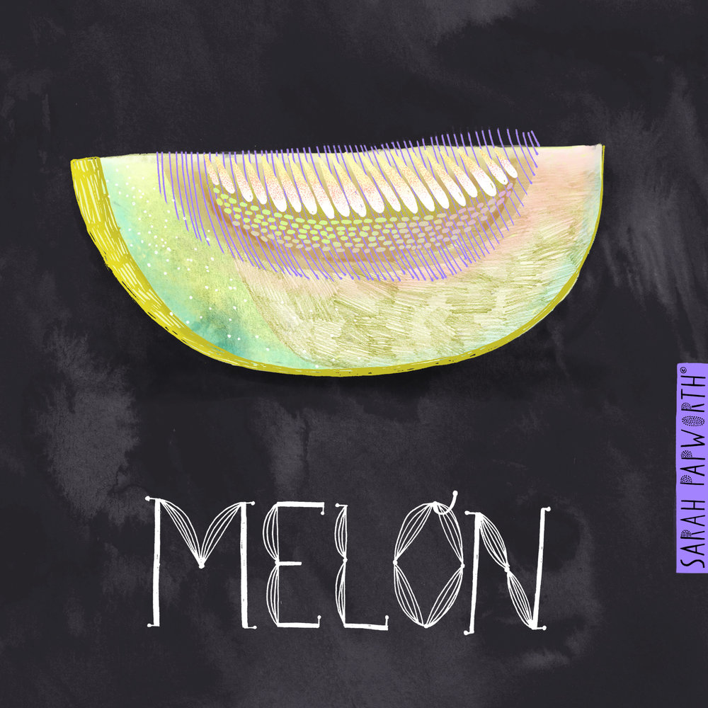melon fruit illustration editorial recipe book artist sarah papworth.jpg