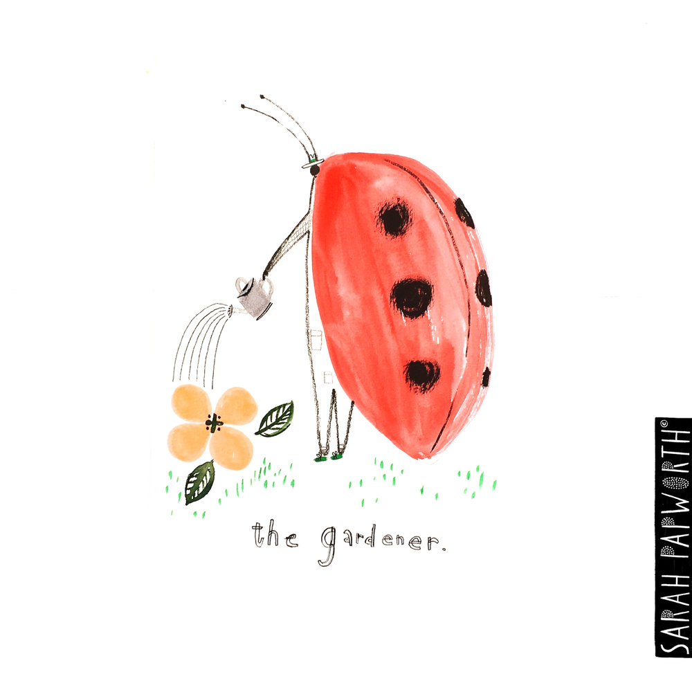 ladybird gardener garden themed illustration sarah papworth editorial book illustration greeting card design.jpg
