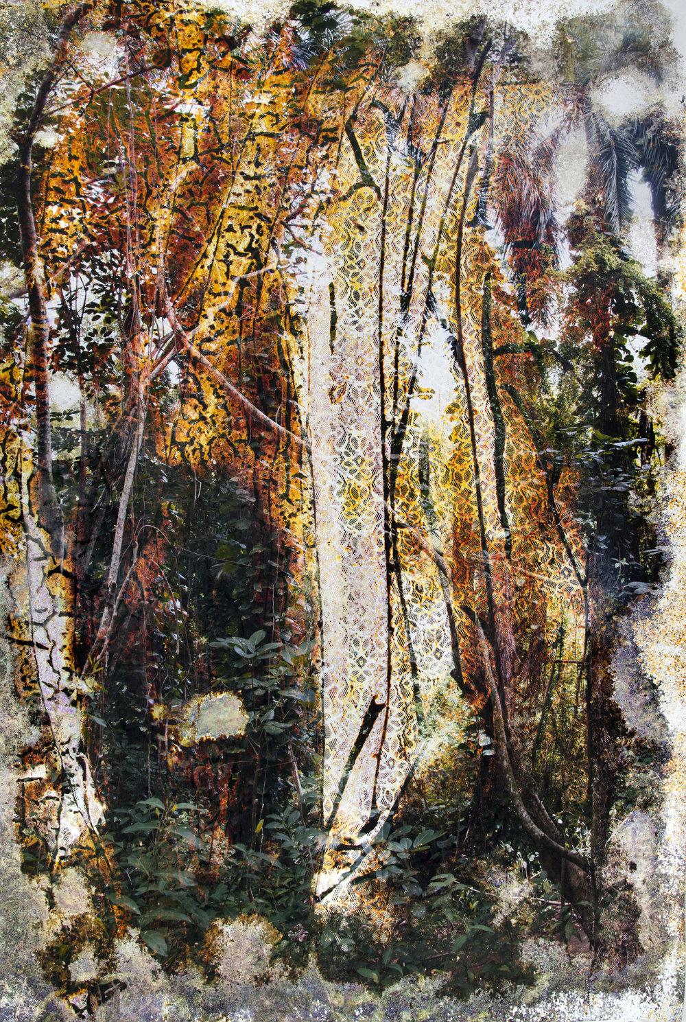 Wai'anae 926015, 2015 c-print buried in Wai'anae, Hawai'i 233 x 152 cm - 91 3/4 x 59 7/8 inches