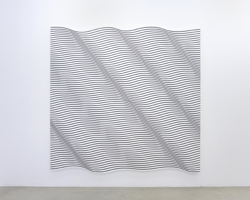 Lanquidity V, 2010 acrylic on canvas 218 x 220 cm - 85 7/8 x 86 5/8 inches