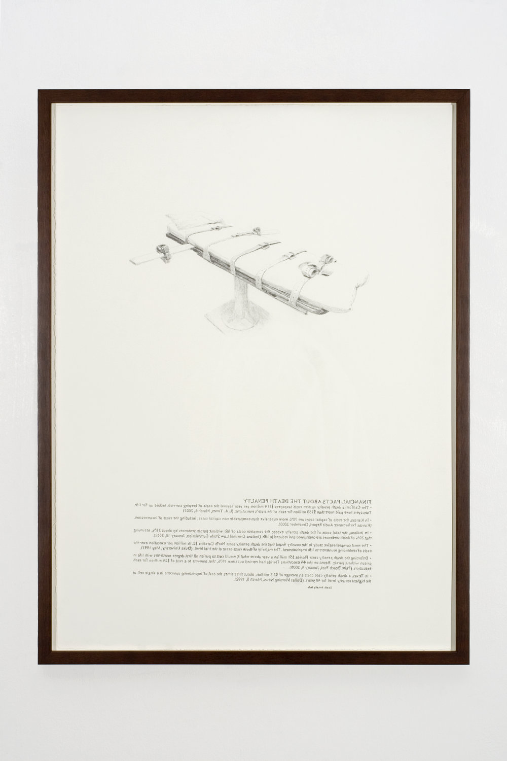 Financial Facts, 2008 graphite on paper 81 x 61 cm - 32 x 24 inches (framed)