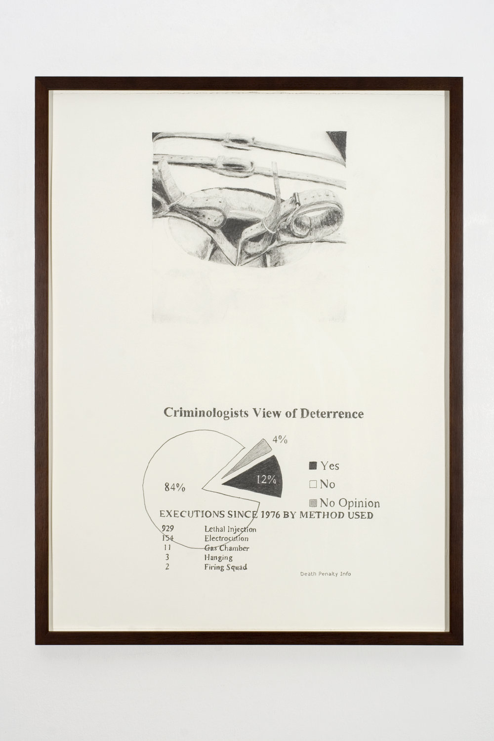 Criminologists View, 2008 graphite on paper 81 x 61 cm - 32 x 24 inches (framed)