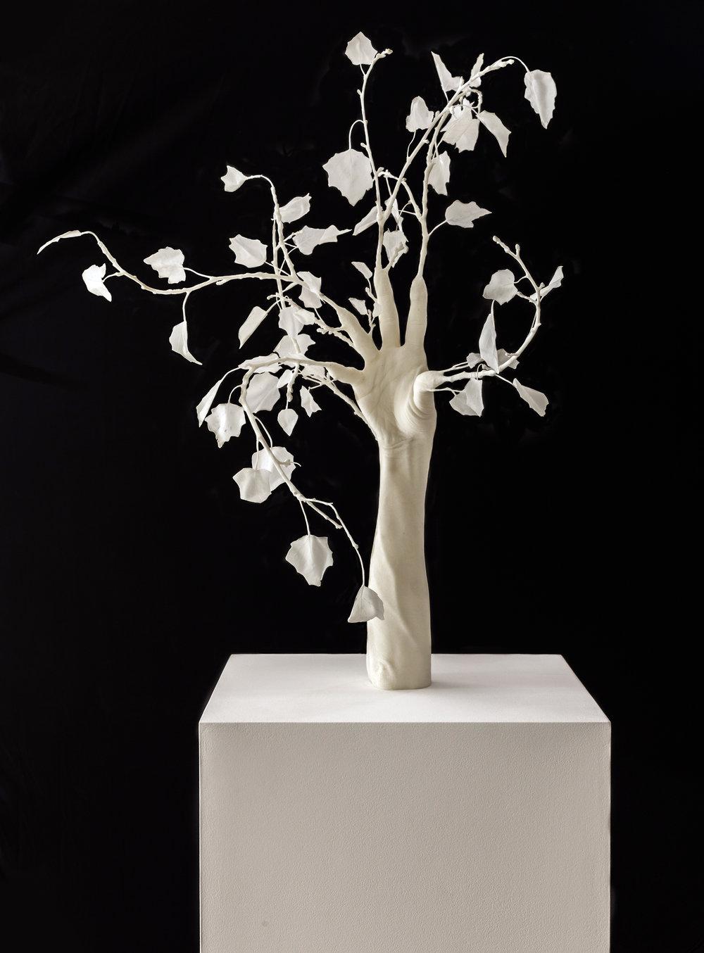 Daphné, 2014 resin 70 x 80 cm - 27 1/2 x 31 1/2 inches