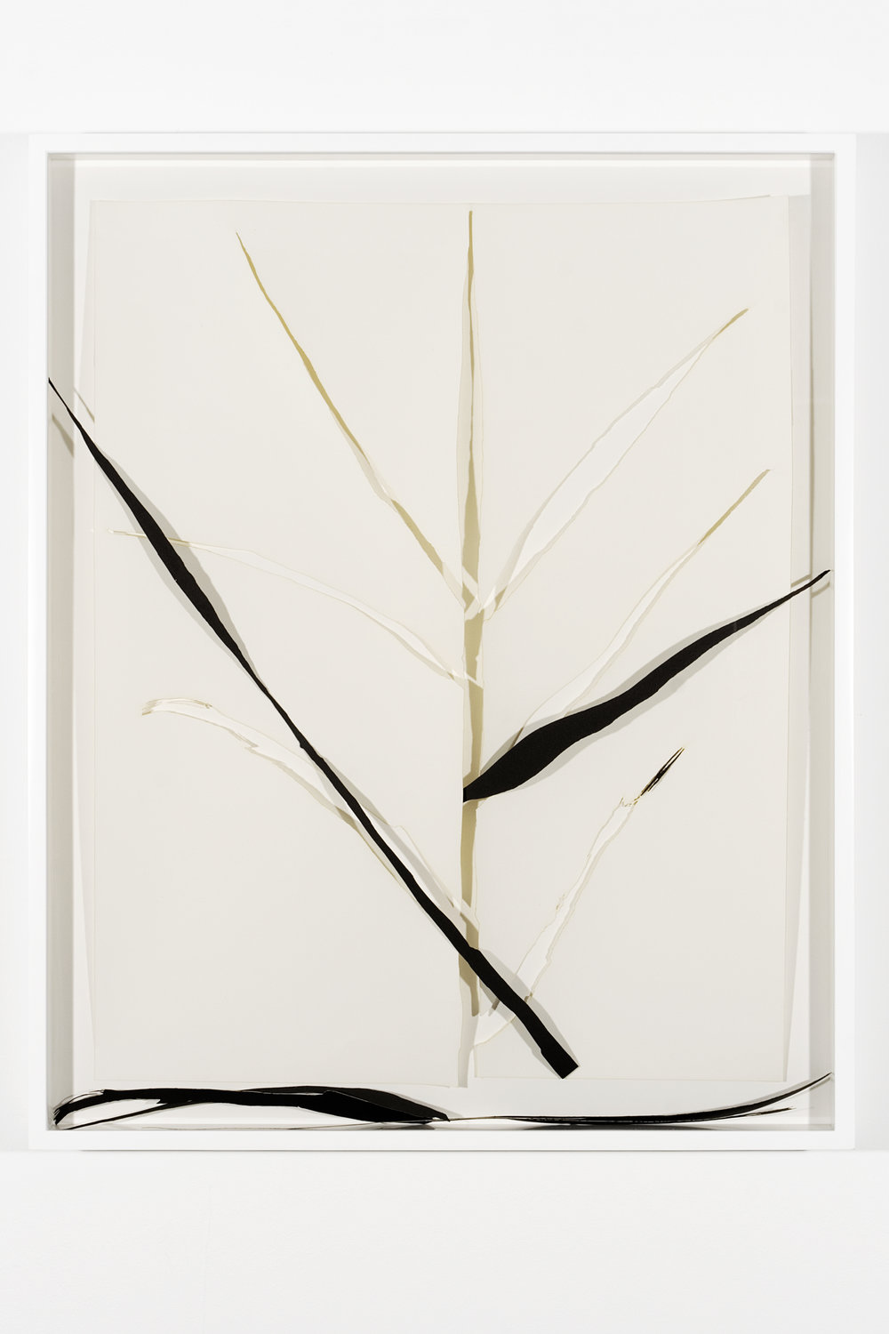 """Collapsed Drawing: """"Grass"""" (Ellsworth Kelly), 2007 laser-cut paper and laser-cut archival digital print mounted on museum board 80,7 x 65,5 cm - 31 3/4 x 25 3/4 inches (framed)"""