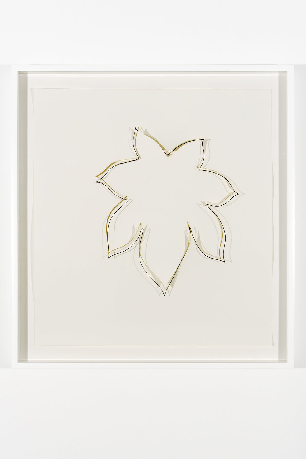 """Collapsed Drawing: """"Castor Bean Leaf"""" (Ellsworth Kelly), 2007 laser-cut paper and laser-cut archival digital print mounted on museum board 70,8 x 66 cm - 27 7/8 x 26 inches"""