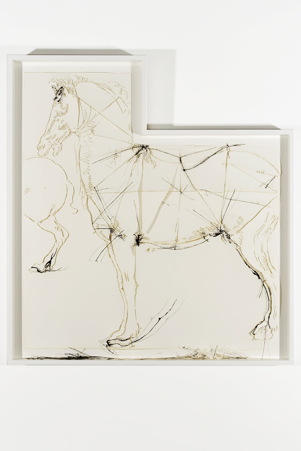 """Collapsed Drawing: """"Proportional Analysis of a Horse"""" (Leonardo da Vinci), 2007 laser-cut paper and laser-cut archival digital print mounted on museum board 107 x 93,5 cm - 42 1/8 x 36 3/4 inches (framed)"""